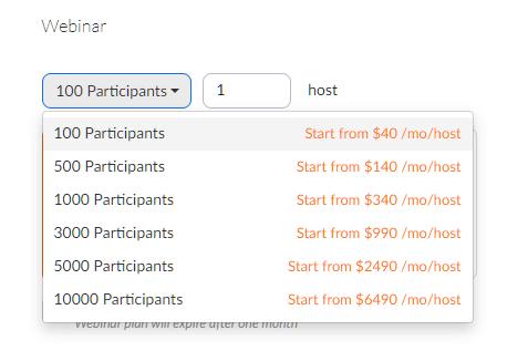 Zoom Webinars Pricing Scalability